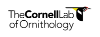 Cornell Lab of Ornithology Logo