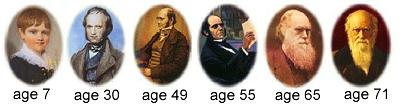 Portraits of Darwin